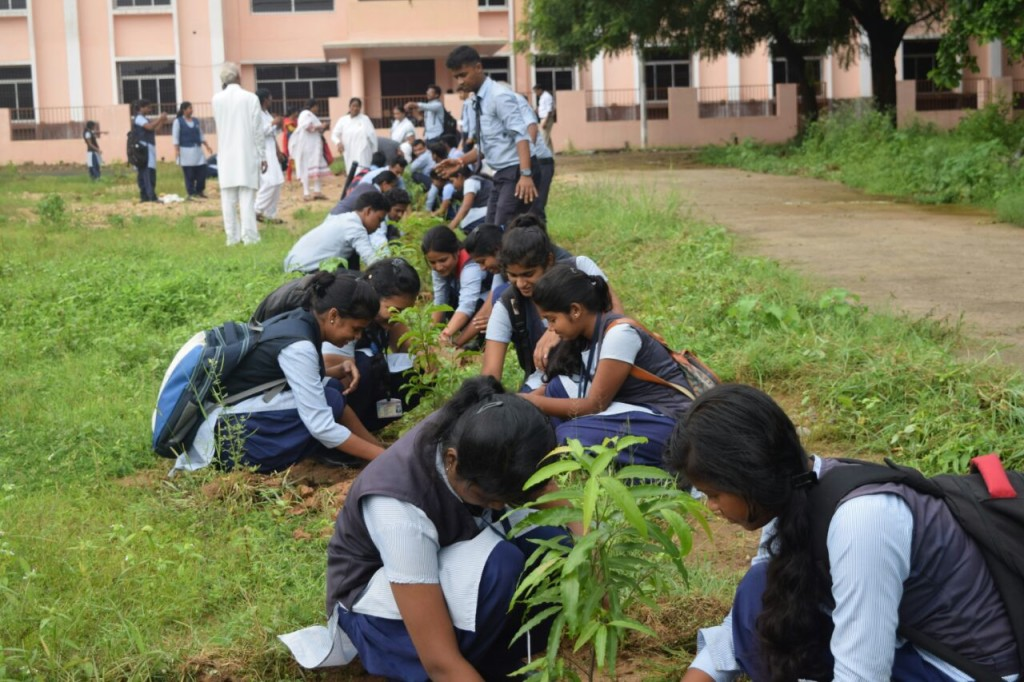 students of collage planting trees (1)