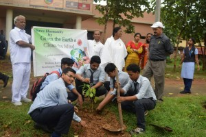 students planting tree in collage
